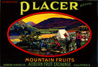 PlacerMountainFruits